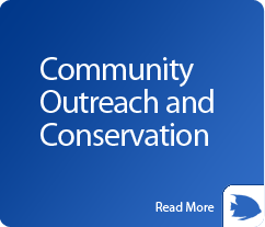 box-community-outreach-and-conservation