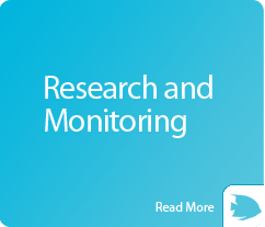 box-research-and-monitoring