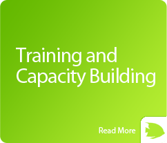 box-training-and-capacity-building