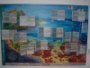Discovery Board 1