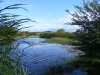 wetlands-in-pereybere